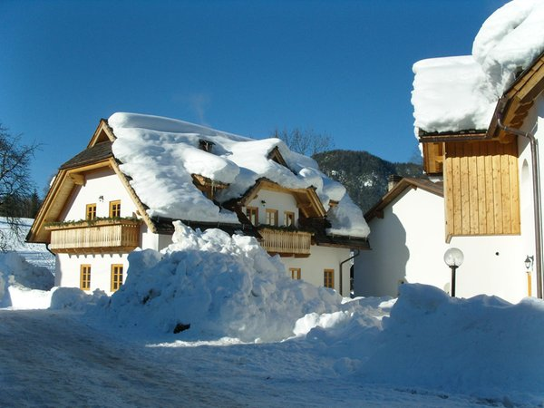 Foto invernale di presentazione Foresta di Tarvisio - Albergo diffuso