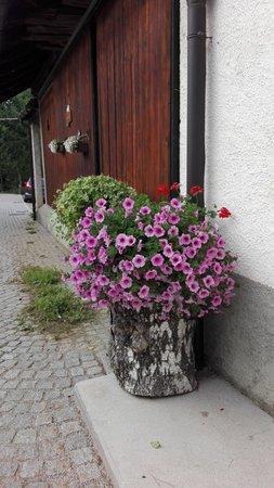 Foto del giardino Tarvisio