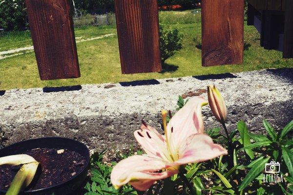 Foto einiger Details  Al Sentiero di Charly