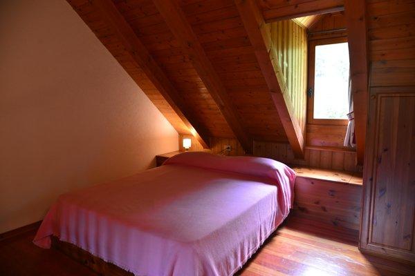 Foto della camera B&B + Appartamenti in agriturismo Pian dei Tass