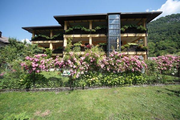 Photo exteriors in summer Valcellina e Val Vajont