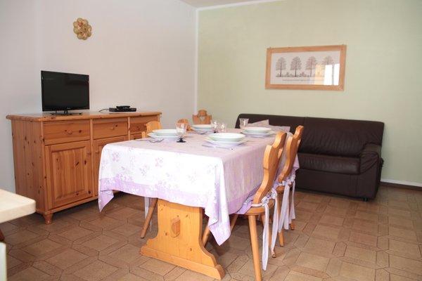 Photo of the apartment Valcellina e Val Vajont