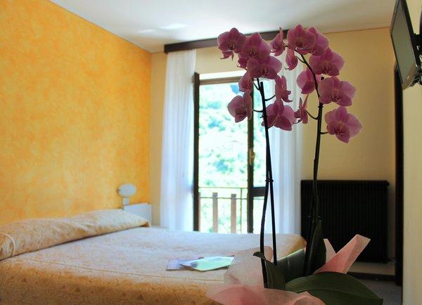 Photo of the room Hotel Meublé La Betulla