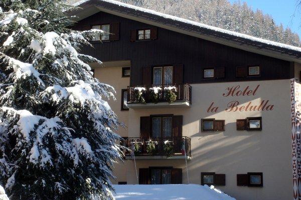 Foto invernale di presentazione Meublé La Betulla - Hotel 3 stelle