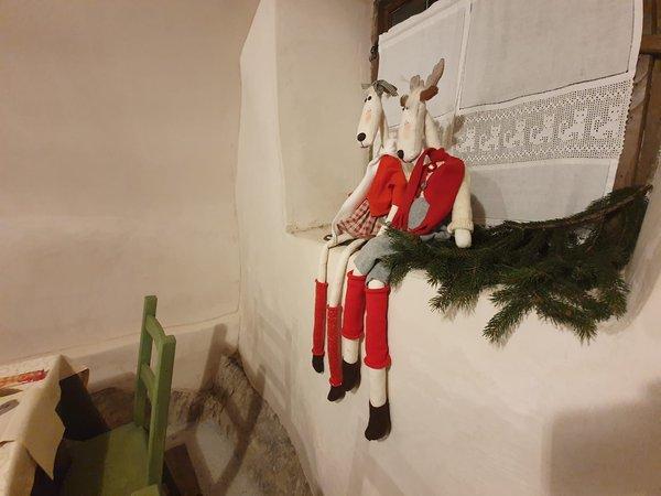 Foto di alcuni dettagli Hotel Garni Le Corti