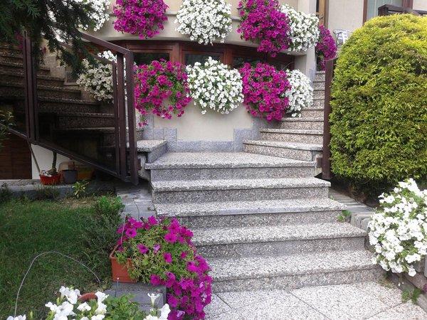 Foto del giardino Lanzada (Sondrio - Valmalenco)
