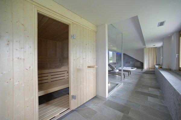 Foto della sauna Poggiridenti