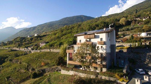 Foto esterno in estate Wine Hotel Retici Balzi