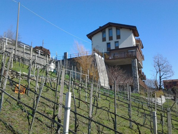 Foto estiva di presentazione Wine Hotel Retici Balzi - Hotel 4 stelle