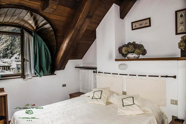 Photo of the room Hotel Meublé Stelvio