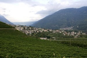Photo gallery Valtellina summer