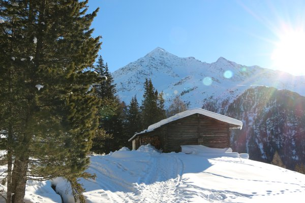 Photo gallery Valfurva - S. Caterina (Bormio and surroundings) winter