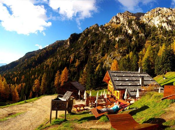 Photo exteriors in summer Alpine farm Kaserill Alm