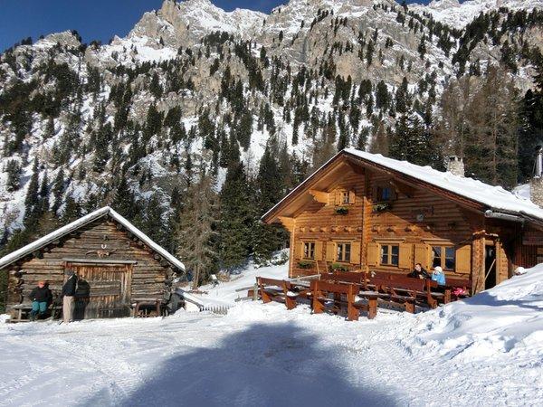 Winter presentation photo Alpine farm Kaserill Alm