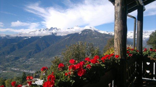 Foto del balcone Il Sorbo