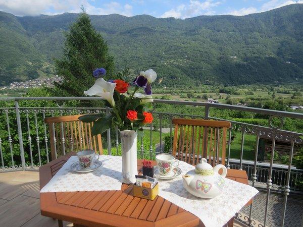 Foto del balcone Il Grappolo