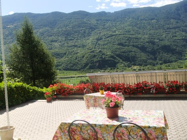 Photo of the garden Bianzone (Tirano - Media Valle)