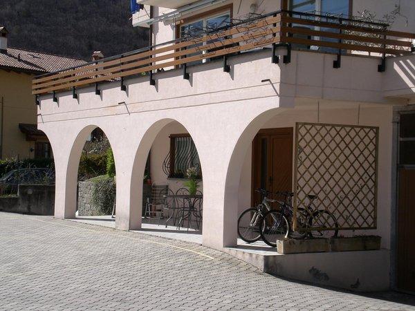 Foto esterno in estate Rondinella