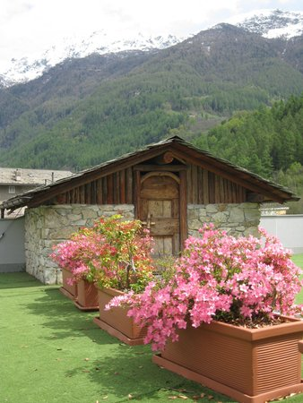 Photo of the garden Chiesa in Valmalenco