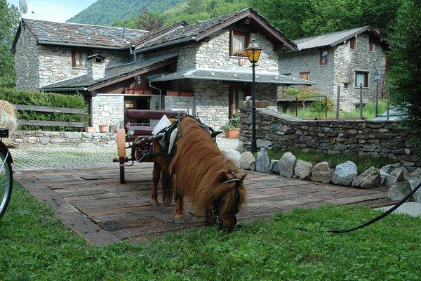 Cà Dla Pia - Appartamenti in agriturismo  Cosio Valtellino (Morbegno - Bassa Valle)