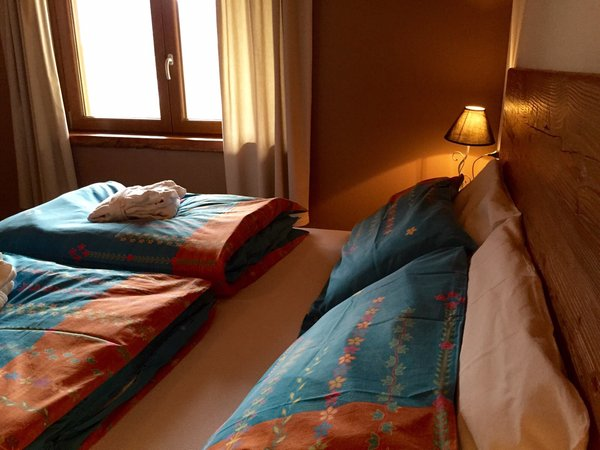 Photo of the room Bed & Breakfast Mortirolo