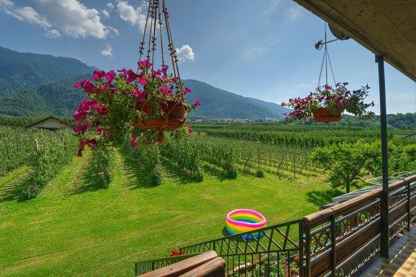 Foto del giardino Sernio (Tirano - Media Valle)