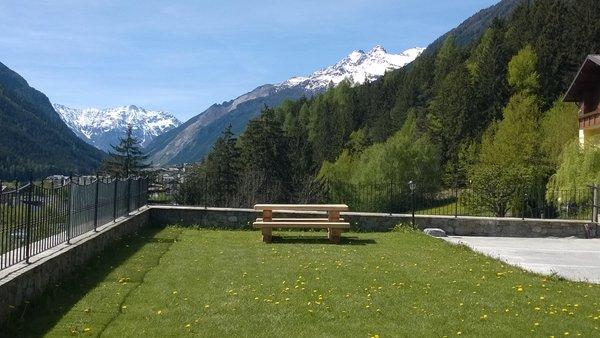 Foto del giardino Valdisotto (Bormio e dintorni)