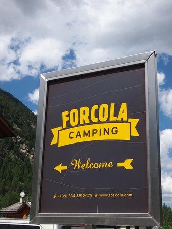 Logo Forcola