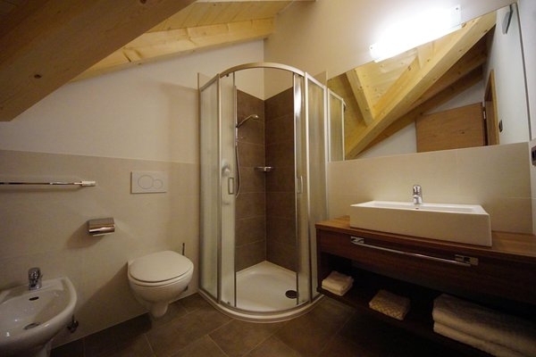 Photo of the bathroom Apartments Ciasa Costadedoi