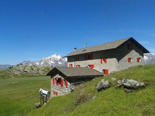 Sommer Präsentationsbild Berghütte Cristina