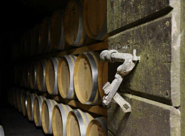 Wine cellar Mese (Valchiavenna) Crotasc