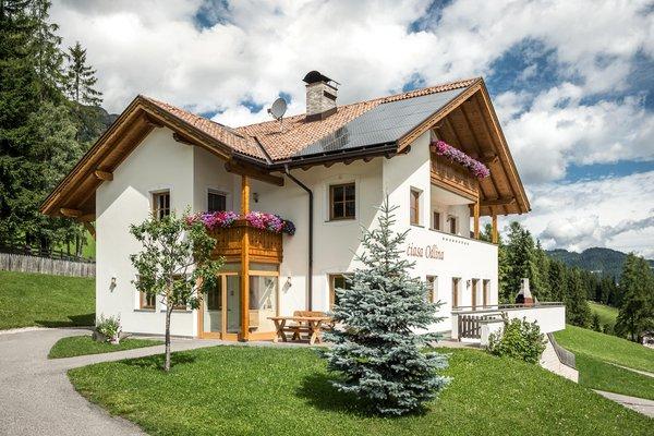Foto estiva di presentazione Appartamenti Ciasa Odlina