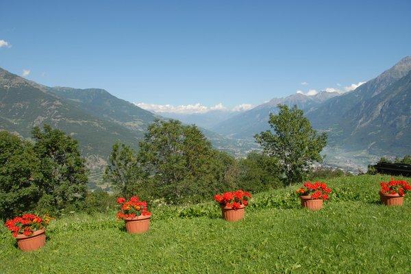 Foto del giardino Aosta