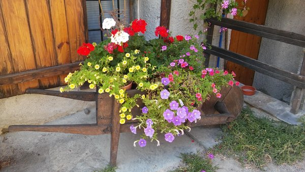 Foto del giardino Saint-Marcel (Aosta)
