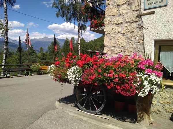 Foto del giardino Aymavilles (Gran Paradiso)