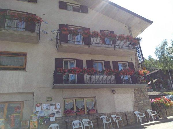 Foto esterno in estate La Pineta