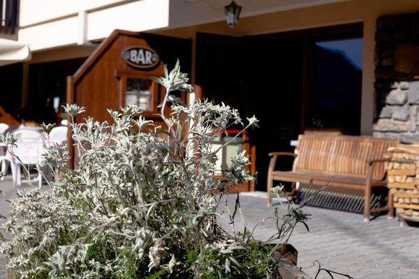 Foto esterno Hotel La Vallée Blanche