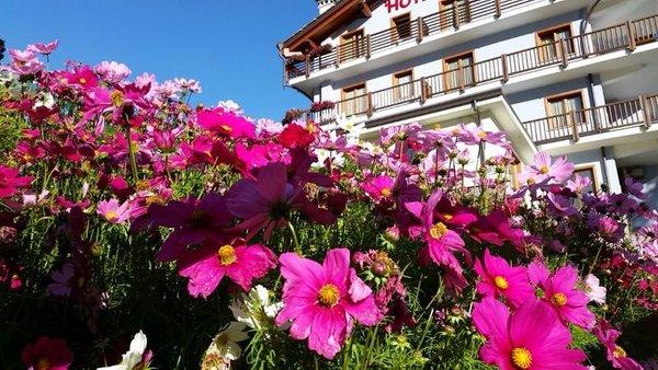Foto estiva di presentazione Hotel Laghetto