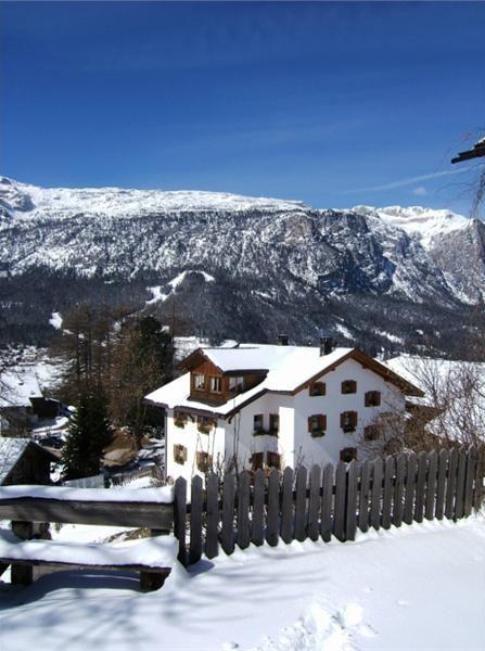 Foto esterno in inverno Suracianins