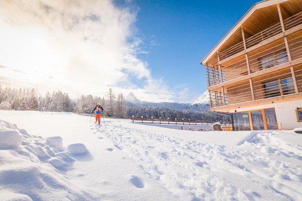 Foto esterno in inverno JOAS natur.hotel.b&b