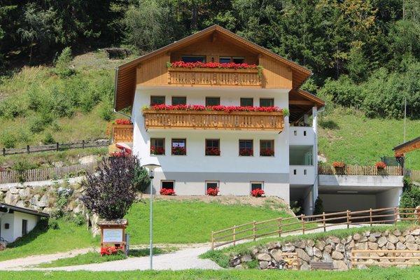 Foto estiva di presentazione Zehenthof - Appartamenti in agriturismo 2 fiori