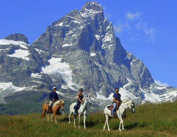 Cavallo e natura saint vincent