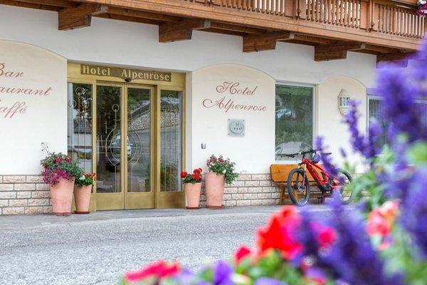 Foto esterno Hotel Alpenrose - Rosalpina