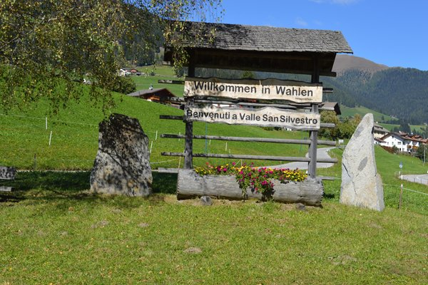 Photo gallery Dobbiaco / Toblach summer