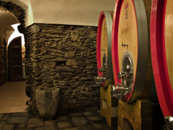 Wine cellar Sondrio Triasso e Sassella