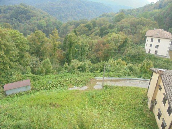 Foto del giardino Vito d'Asio (Piancavallo e Dolomiti Friulane)