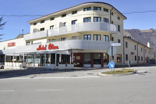 Foto estiva di presentazione Hotel Oliva