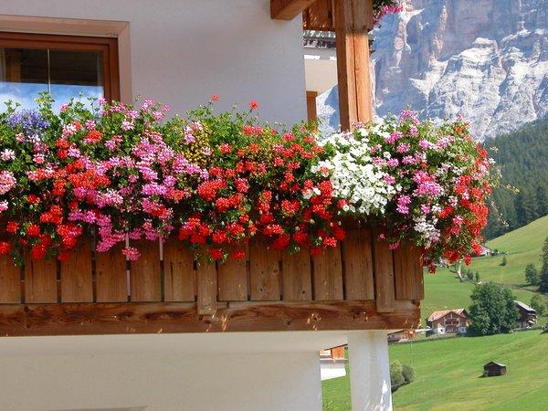 Photo of the balcony Ciasa Sanvi