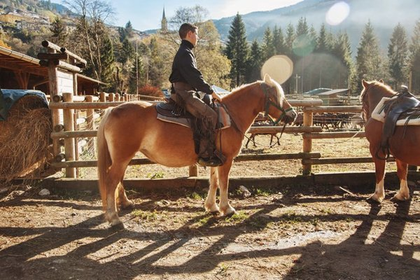 Bram's Ranch - Riding farm  Paularo (Carnia)