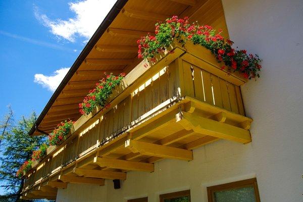 Foto esterno in estate Bergwald Mille Fiori